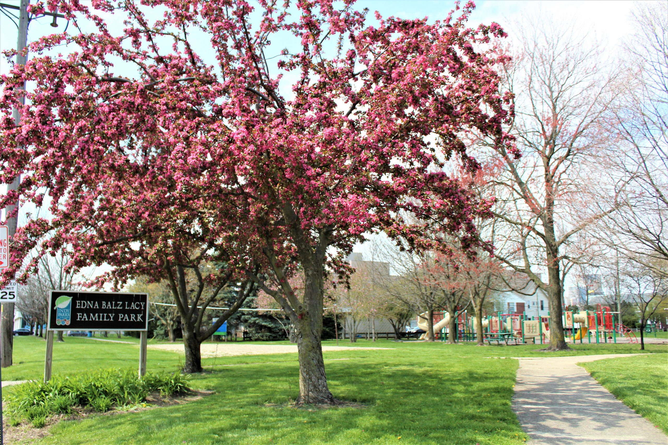 Fletcher Place Neighborhood Edna Balz Lacy Park